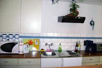 Ferienwohnung Hohensee Krumminer Wiek Küche