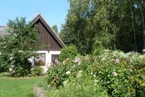Ferienhaus Nossentiner Hütte Mecklenburgische Seenplatte Haus