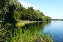 Ferienwohnung Alt Gaarz Hof See Grundstück