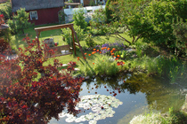 Ferienwohnung Schwaan Ostseeküste Garten Teich