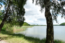 Feriewohnung Herzwolde Lutowsee Umgebung