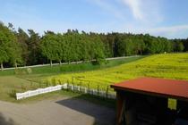 Ferienwohnung Mellenthin Insel Usedom Blick Hof