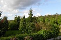 Ferienwohnung Mellenthin Insel Usedom Fensterblick