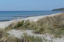 Ferienwohnung Sagard Insel Rügen Umgebung Ostsee