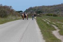Ferienwohnung Trent Insel Rügen Ostsee Umgebung