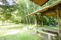 Ferienhaus Neukalen Kummerower See Garten