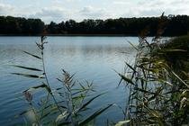 Ferienwohnung Mölln Krakower See Umgebung von Möllen