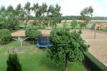 Ferienwohnung Minzow Mecklenburgische Seenplatte Garten