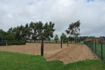 Ferienwohnung Minzow Mecklenburgische Seenplatte Pferdekoppel
