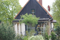 Ferienhaus Loppin Loppiner See Hausansicht