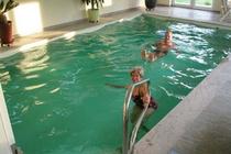 Ferienhaus Dabel Holzendorfer See Baden im Pool