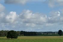 Ferienwohnung Wredenhagen Mecklenburgische Seenplatte Naturblick