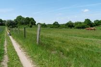 Fleesensee Wanderweg