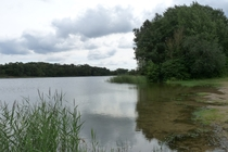Penzlin See
