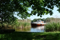 Boot im Schilf Jabelscher See