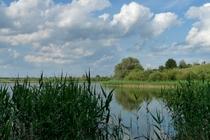 Feldberger Seenland Blankensee See