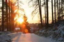Ferienhaus Krakower See Serrahn Winterlandschaft