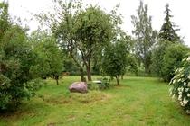 Ferienhaus Nähe Usedom Salchow Garten Sitzgruppe