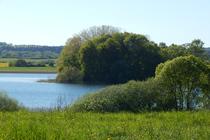 Feldberger Seenlandschaft Rödliner See