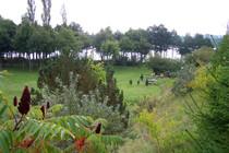 Ferienwohnung  Dabel Holzendorfer See Grundstück mit Spielplatz