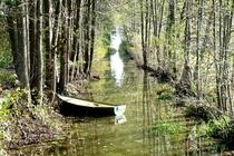 Ferienhaus MV mit Boot