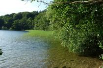 Urlaub Plauer See
