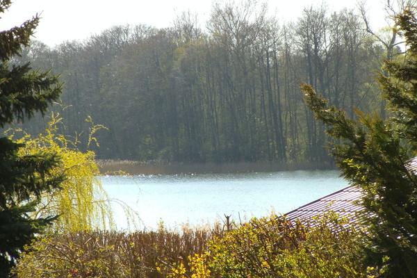 Ferienhaus Mecklenburger Seenplatte Dabel