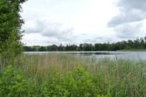 Umgebungsfoto Ferienhaus am Wotrumer See