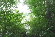 Ferienhaus Seenähe Umgebungsfoto