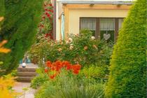 Ferienwohnung Malchow Malchower See Wassergrundstück Garten Blick zur Wohnung