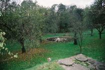 Ferienhaus in Woldzegarten in der Mecklenburgischen Seenplatte Garten