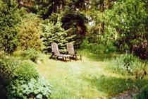 Ferienhaus Müritz Waren Garten Liegestühle