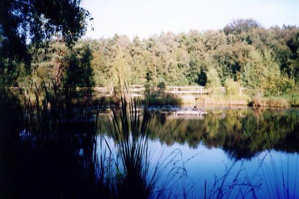Waren Müritz Moorsee