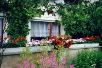 Ferienwohnung Malchow Wassergrundstück Malchower See Hausansicht