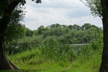 Ferienwohnung Kratzeburg Dambeck Dambecker See